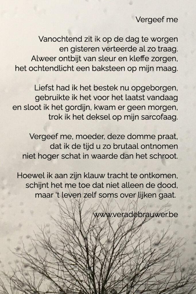 """Gedicht """"Vergeef me"""" van Vera De Brauwer"""